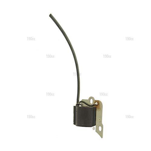 3210665 - Bobina de Encendido desbrozadora GGP: Amazon.es ...
