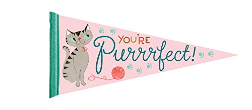 Party Partners You're Purrrfect! Decorative Large Felt Pennant, Pink by Party Partners
