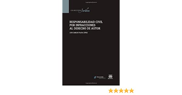 Responsabilidad Civil Por Infracciones Al Derecho De Autor Spanish