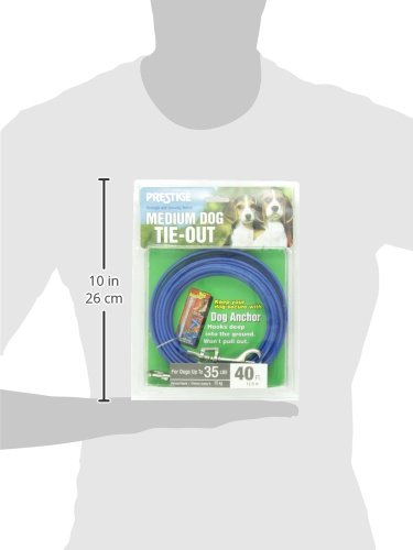 Boss Pet - Prestige 40ft Medium Dog Tie Out by Boss Pet Products (Image #4)
