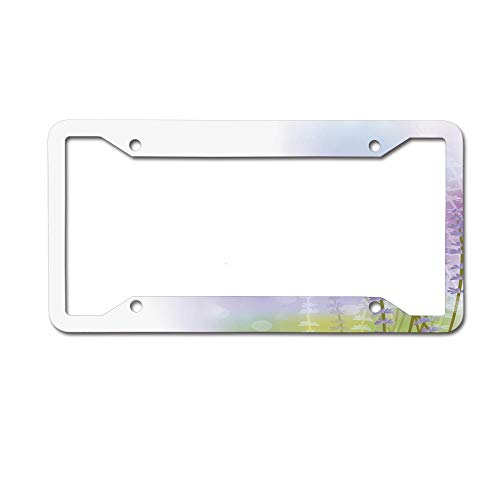 (SDGlicenseplateframeIUY Nature Inspired Abstract Backdrop with Gentle Pastel Lavender Stems License Plate Novelty Auto Car Tag Aluminum License Plate Frame .(12x6) 4 Holes)