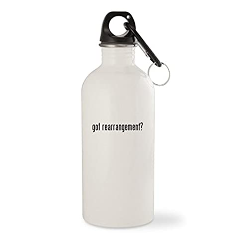 got rearrangement? - White 20oz Stainless Steel Water Bottle with Carabiner (Thinking Changing Rearranging)