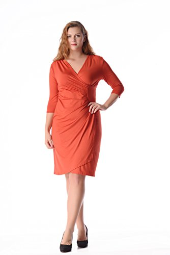 ESPRLIA Women's Plus Size V Neck 3/4 Sleeve Vintage Wrap Empire Waist Dress