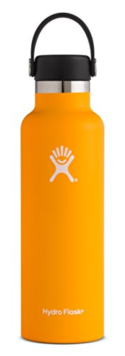 Hydro Flask 21 oz Double Wall Vacuum Insulated Stainless Steel Leak Proof Sports Water Bottle, Standard Mouth with BPA Free Flex Cap, Mango (22 Performance Ounce Bottle)