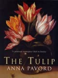 Amazon / Bloomsbury Publishing PLC: The Tulip (Anna Pavord)