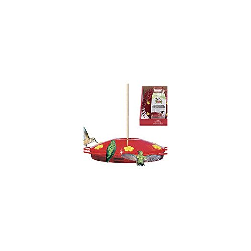 Perky Pet 221 16 Oz Hummingbird Oasis