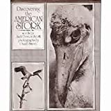 Discovering the American Stork, Jack Denton Scott and Ozzie Sweet, 0152030557