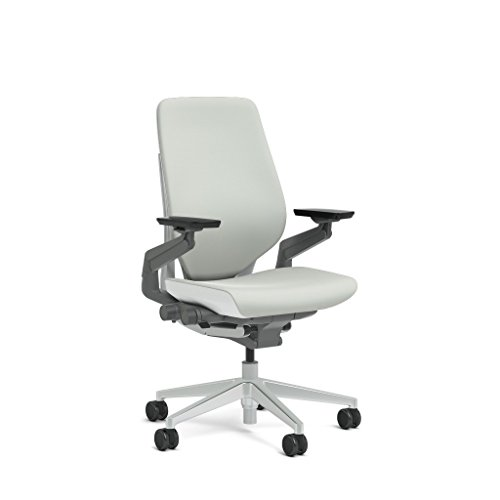 Cheap Steelcase Gesture Task Chair: Shell Back – Platinum Metallic Frame/Base/Seagull Accent – Standard Carpet Casters