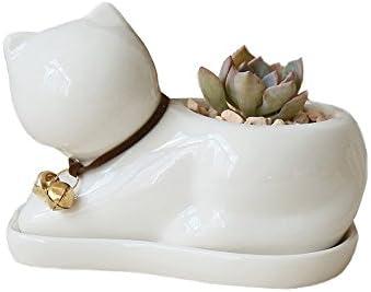 Ignislife Succulent Pot White Porcelain Succulents Window Box Planter Cute Cat