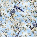 Birds Of A Feather Blue Jays And Apple Blossoms Blank Cotton Fabric Light Blue 9006