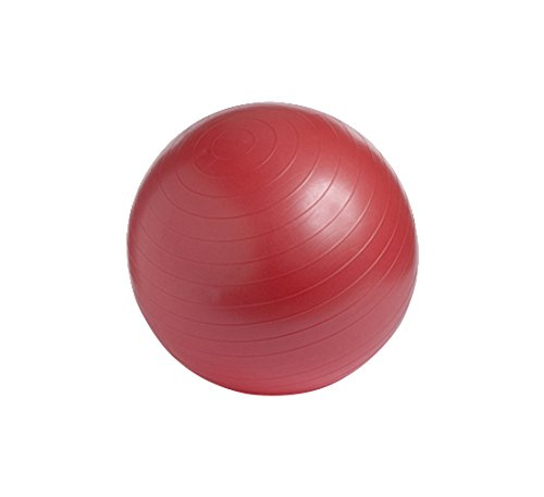 Althea-Medical-Group-Anti-Burst-Exercise-Ball