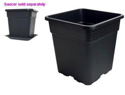 Pot, Square 2 Gallon, Black Plastic, 1 Dozen