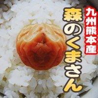 森のくまさん 2kg(玄米)29年産 熊本県産