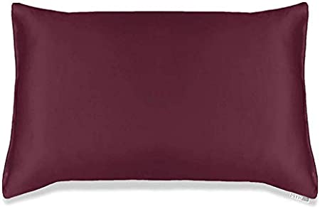MYK Silk Pure Natural Mulberry Silk Pillowcase, 19 Momme with Cotton Underside