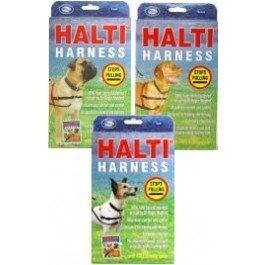 Company of Animals Arnés Halti, pequeño: Amazon.es: Productos para ...