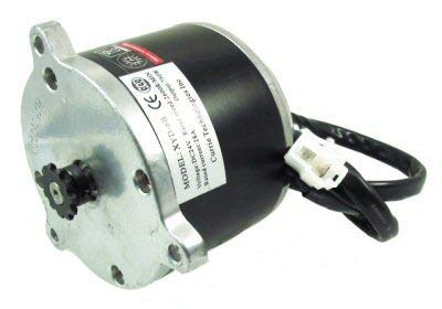(Currie 24 Volt 750 Watt Electric Brush Motor, High Performance, Reversible, with 11 Tooth Sprocket #25 Chain)