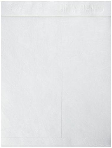 Catalog Envelope Sparco - Sparco Plain Open End Tyvek Catalog Envelopes