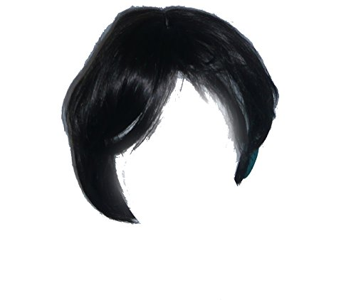 509/160 (black) New Man Wig (70s Characters Fancy Dress)