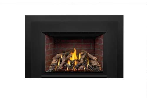 Napoleon Oakville Gas Fireplace Insert GDIX4 by Napoleon
