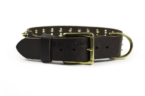 "Dean & Tyler ""4 Row Spikes Brown Wide Dog Collar with Brass Spikes and Buckle, Size 38-Inch by 2-1/4-Inch, Fits Neck 36-Inch to 40-Inch"