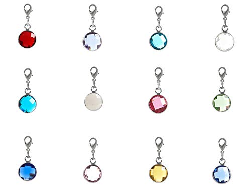 1 Set Clip On Silver Birthstone Charms 10mm Austrian Crystal with Lobster Clasp for Jewelry Craft Making CCP5-SL ()