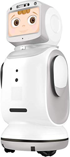 Sanbot Nano Powered by Amazon Alexa,Smart IoT Function,Remote Video/Audio Call,Home Service Robot,Remote Monitoring.