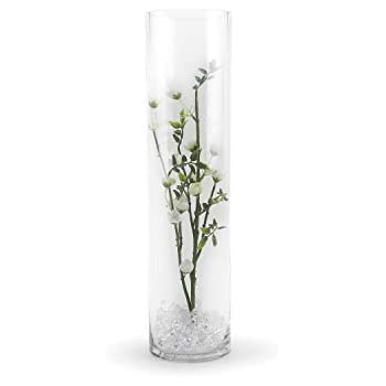Amazon Com 6 Pack Wgv 4 Quot X 16 Quot Cylinder Vase With Wgv Wedding Center Pieces Event Decoration