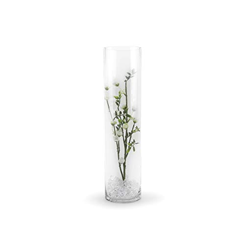 WGV Clear Cylinder Glass Vase, 4 by - Glass Vase Tall