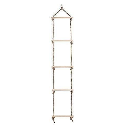 Climbing A Ladder - 4