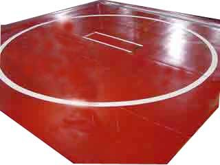 Wrestling Mat New 10 X10 Two 5 X10 Pieces Mat Gray