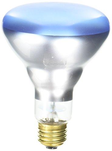 150 Watt Reflector Flood Light Bulb in Florida - 7