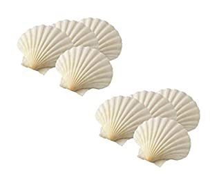 HIC Harold Import Co. 45678/2 Maine Man Baking Shells, 4 Inch, Set of 8, Natural Seashell (B01MQD3KM4) | Amazon price tracker / tracking, Amazon price history charts, Amazon price watches, Amazon price drop alerts