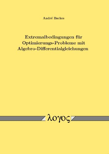 Extremalbedingungen Fur Optimierungs-Probleme Mit Algebro-Differentialgleichungen