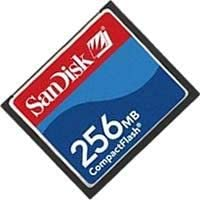 SanDisk 256/MB Compact Flash Card Bulk