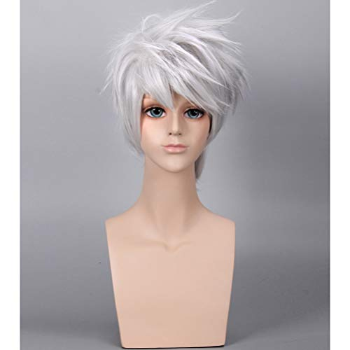 - BERON Short Layered Cool Men Boys Tousled Wig Heat Resistant Synthetic Wigs for Anime Cosplay Party (Silver Grey)