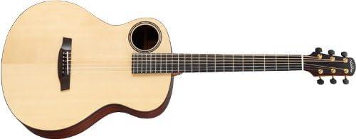 Walden Guitars W-B1-HA - Guitarra barítono: Amazon.es ...