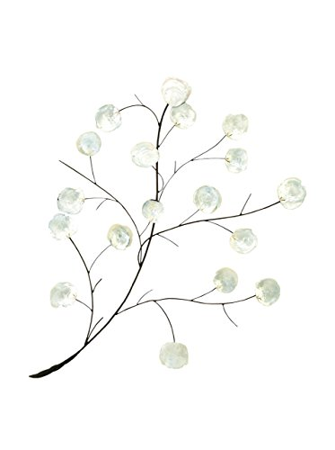 "Deco 79 Coastal Metal and Shell Branch Wall Decor, 37"" H x 27"" L, Silver and Black Finishes"