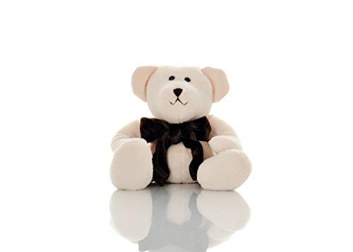 Toasty Bear - 9