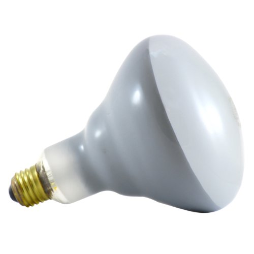 120 Watt Flood Light Bulbs - 8
