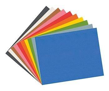 Construction Paper Assorted 12X18 100 Sht