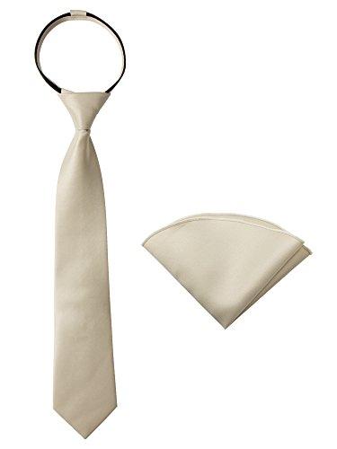 (Spring Notion Boys' Satin Zipper Necktie and Handkerchief Set Medium Champagne)