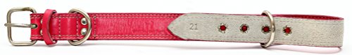 Premium Leather Collars with Sta...
