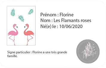 Tichoups Chaussons b/éb/é cuir souple Florine les flamants roses 16//17