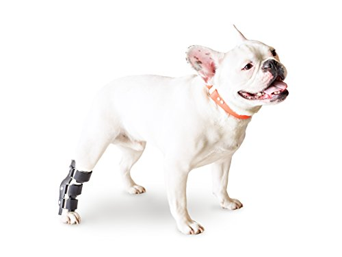 Walkin' Pet Splint for Dogs, Canine Hock Style Rear Leg