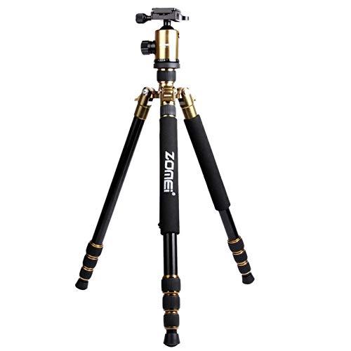 新品本物 KANEED カメラアクセサリー ZOMEI 三脚、一脚 Z888ポータブルプロフェッショナルトラベルアルミ三脚一脚デジタルカメラ用ボールヘッド 三脚、一脚 (色 B07PJ89GXQ : Gold) Gold) Gold B07PJ89GXQ, Lingerie Labo:6598ccca --- martinemoeykens.com