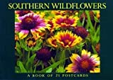 Postcard-Southern Wildflowers, BrownTrout Staff, 1563138182
