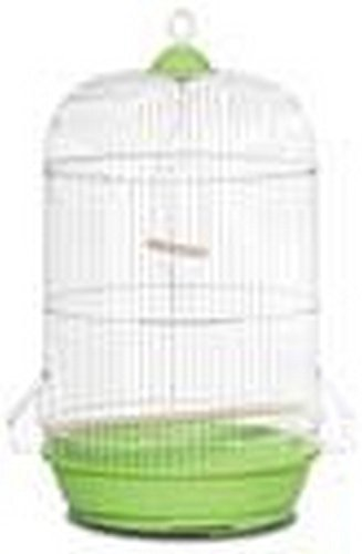 Buy Prevue Pet Products 31999 Small Round Cage 6 Pack Assorted Color Online At Low Prices In India Amazon In