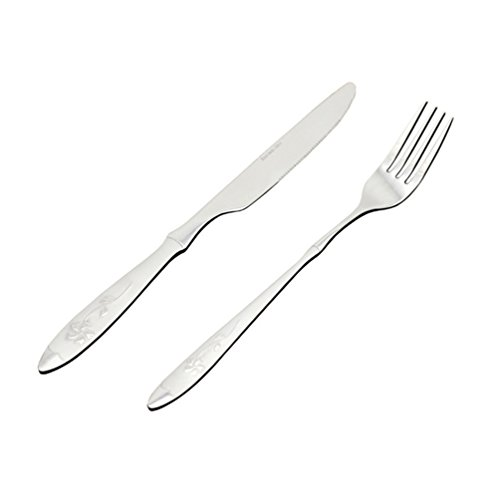 Rojeam 4 Pieces Stainless Steel Flatware 2 Sets Knife Fork ()