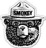 #6: Smokey the Bear Firefighting WILDFIRE sticker 4