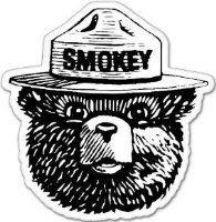 """Smokey the Bear Firefighting WILDFIRE sticker 4"""" x 4"""""""